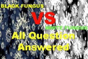 Black Fungus Cause, Symptoms, Treatments, Prevention & Black Fungus Home Remedies : Black Fungus और White Fungus से जुड़े सारे सवालों के जवाब